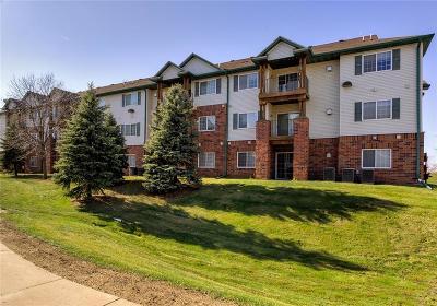 West Des Moines Condo/Townhouse For Sale: 6440 Ep True Parkway #2308
