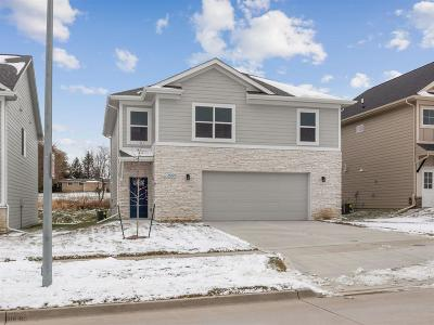 West Des Moines Single Family Home For Sale: 8999 Primo Lane