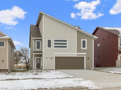 West Des Moines Single Family Home For Sale: 8967 Primo Lane