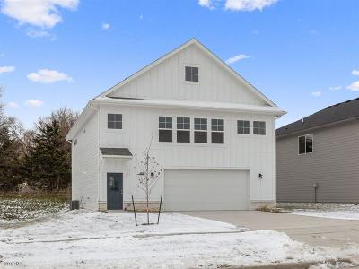 West Des Moines Single Family Home For Sale: 9051 Primo Lane