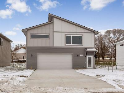 West Des Moines Single Family Home For Sale: 9065 Primo Lane