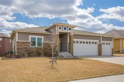 Ankeny Single Family Home For Sale: 1609 NW Reinhart Drive