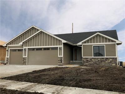 Ankeny Single Family Home For Sale: 3204 NE 17th Street