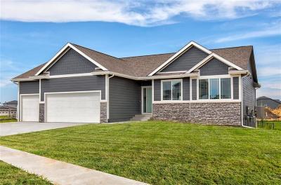 Ankeny Single Family Home For Sale: 1602 NE Vista Court