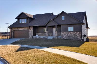 Ankeny Single Family Home For Sale: 901 NW Cedar Court