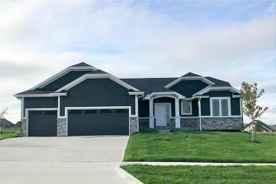 Ankeny Single Family Home For Sale: 603 NE 55th Street