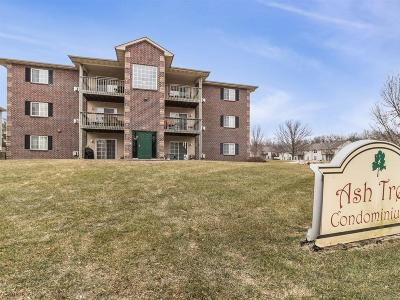 Urbandale Condo/Townhouse For Sale: 5924 Sutton Place #1