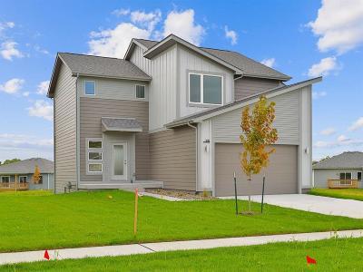 West Des Moines Single Family Home For Sale: 715 Napoli Avenue