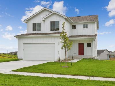 West Des Moines Single Family Home For Sale: 733 Napoli Avenue