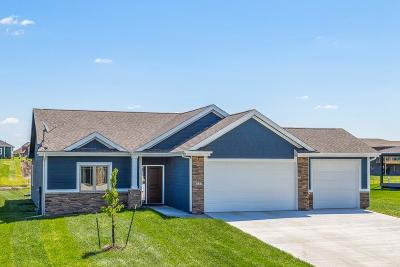 Ankeny Single Family Home For Sale: 8737 NW 27th Court