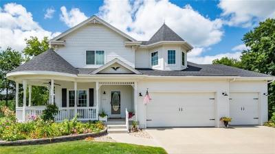 Ankeny Single Family Home For Sale: 610 NW Horizon Court