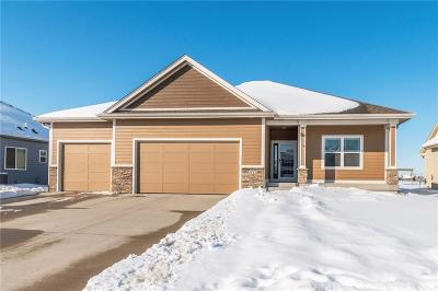 Ankeny Single Family Home For Sale: 3114 NW 16th Court
