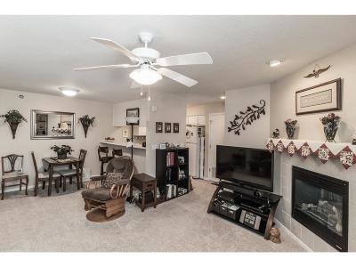 West Des Moines Condo/Townhouse For Sale: 6440 Ep True Parkway #3104