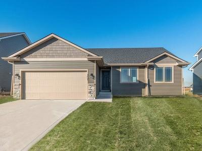 Ankeny Single Family Home For Sale: 3621 NE Winding Trail Drive