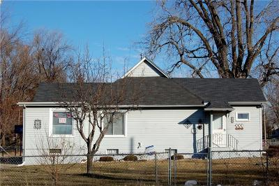 Des Moines Single Family Home For Sale: 1344 E 23rd Street