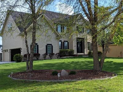 Ankeny Single Family Home For Sale: 802 NE Vail Court