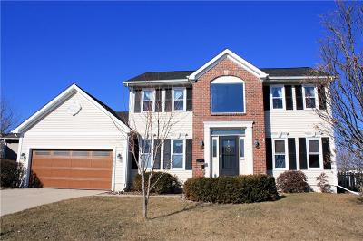 Ankeny Single Family Home For Sale: 1006 SE Judy Drive