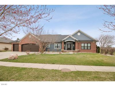 Ankeny Single Family Home For Sale: 3309 NE Trilein Drive