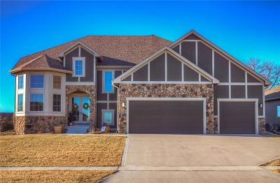Ankeny Single Family Home For Sale: 3908 NE Bellagio Circle