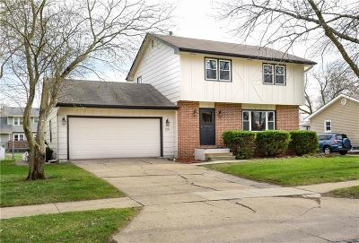 Waukee Single Family Home For Sale: 220 Christopher Avenue