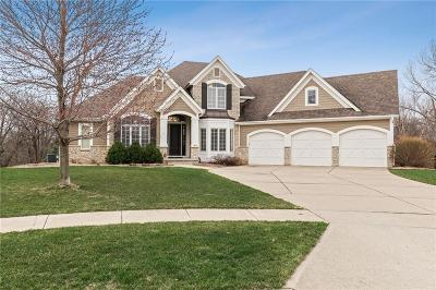 Ankeny Single Family Home For Sale: 3809 SW 4th Court