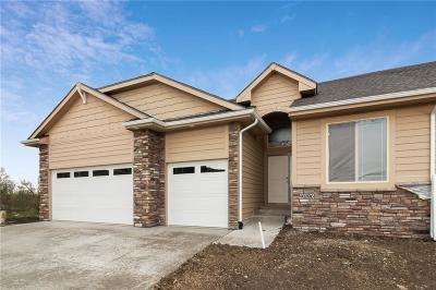 West Des Moines Condo/Townhouse For Sale: 9196 Geanna Court
