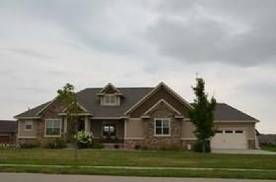 Ankeny Single Family Home For Sale: 5119 NE Jan Rose Parkway
