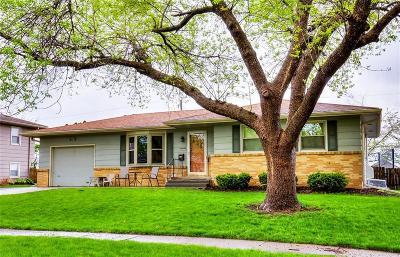Ankeny Single Family Home For Sale: 902 SE 2nd Street