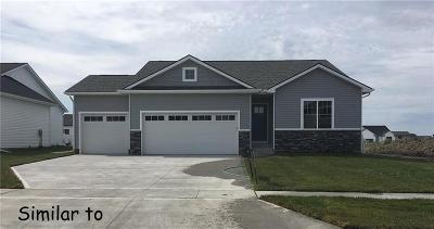 Ankeny Single Family Home For Sale: 2703 NW 21st Street