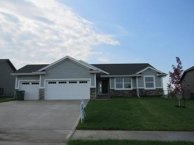 Ankeny Single Family Home For Sale: 607 NE 55th Street