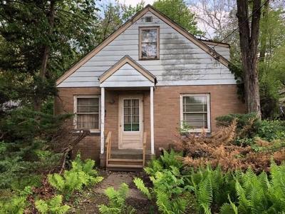 Des Moines Single Family Home For Sale: 3008 Francis Avenue