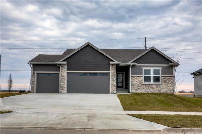 Ankeny Single Family Home For Sale: 3104 NE 17th Street