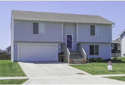 Bondurant Single Family Home For Sale: 435 3rd Street SE