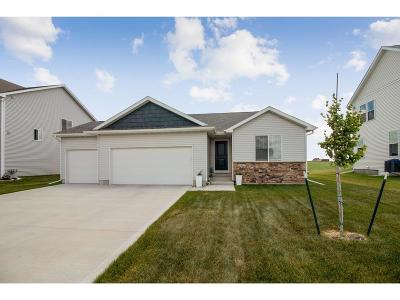 Ankeny Single Family Home For Sale: 1307 NW Abbie Drive