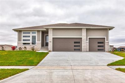 Ankeny Single Family Home For Sale: 3019 NW Abilene Road