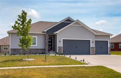 Ankeny Single Family Home For Sale: 2015 NW Abilene Road
