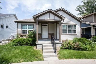 Clive Single Family Home For Sale: 16388 Boston Commons Circle