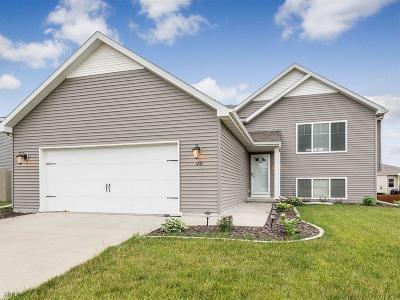 Waukee Single Family Home For Sale: 120 SE Stone Prairie Drive