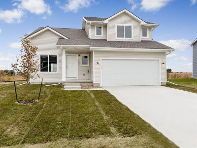Granger Single Family Home For Sale: 2304 Sunview Drive