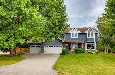 Ankeny Single Family Home For Sale: 6900 NE Halbrook Lane