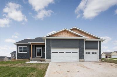 Van Meter Single Family Home For Sale: 5370 Bulldog Avenue
