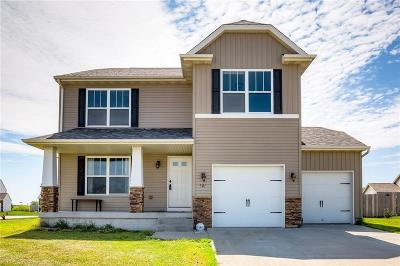 Bondurant Single Family Home For Sale: 609 36th Street