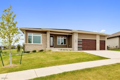 Waukee Single Family Home For Sale: 165 Bailey Circle