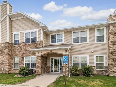 Waukee Condo/Townhouse For Sale: 1305 SE University Avenue #206