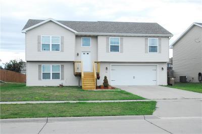 Bondurant Single Family Home For Sale: 501 Filmore Avenue