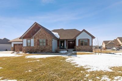 Ankeny Single Family Home For Sale: 5006 NE Jan Rose Parkway