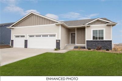 Ankeny Single Family Home For Sale: 3006 NW Abilene Road