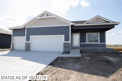 Ankeny Single Family Home For Sale: 3002 NW Abilene Road