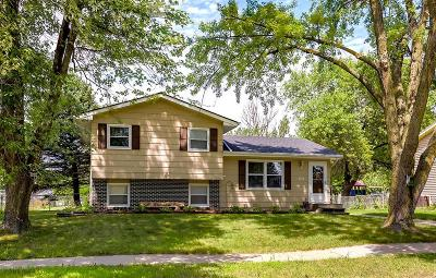 Ankeny Single Family Home For Sale: 1914 NW 9th Street