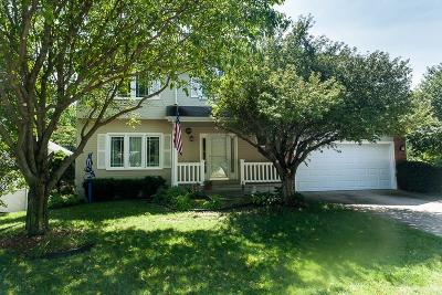 West Des Moines Single Family Home For Sale: 4790 Waterford Drive